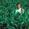 Field of Dreams: Skirball Outdoor Screenings
