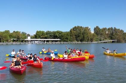 Excursión en kayak de 2,5 horas en Sevilla en el río Guadalquivir Oferta en Groupon