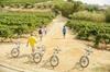 Viñedos y playas de Barcelona en bicicleta eléctrica privado