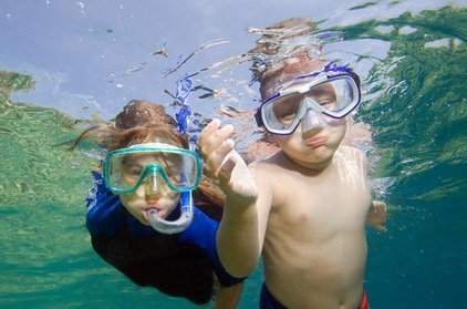 Private Snorkeling to Egmont, Outback, and Shell Key Islands 80cb9c66-177f-4fd3-8462-cda24adda505
