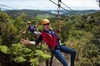 Full Day Waiheke Island Tour: Ziplining, Wine Tasting and Vineyard ...