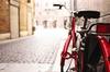 Tour di Firenze in bici