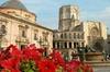 Excursión diaria en el casco antiguo de Valencia