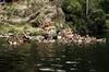 Melbourne Premium Nature Escapes - Gorge Tour