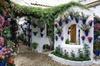 Recorrido por el Festival de los patios de Córdoba