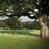 $30 for a Round of Golf for 2 Players Including Green Fees and Cart...