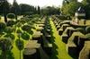 Excursion indépendante dans les jardins du manoir d'Eyrignac à Sali...