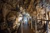 Biglietto di ingresso alle grotte Antro del Corchia