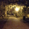Savannah Hauntings Tour