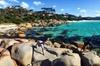 4-Day Tasmania East Coast Adventure from Launceston to Hobart Inclu...