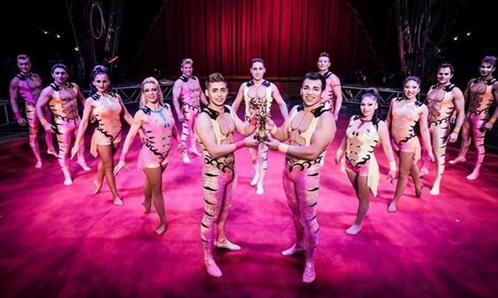Circus Vargas: iLUMINOUS at Circus Vargas -- Vista