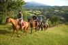 Tour privato a cavallo nella campagna siciliana e pranzo presso agr...