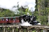 Dandenong Ranges & Puffing Billy