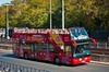 San Antonio River Walk Cruise, 3-Day Hop-On Hop-Off Bus Pass and To...