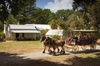 Phillip Island Churchill Island Heritage Farm: Entry ticket
