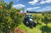 The Orchard Perth Tour & Tractor Ride