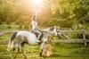 Tour a cavallo con degustazione di vini, partenza da Siena