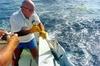 5 horas en barco de pesca en el sur de Gran Canaria.