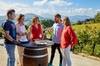 Excursión de vino Txakolí por Getaria y Zarautz desde San Sebastián...