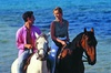 Rolling Hills Ranch - Scott Township: $30 For 2 Hours Of Horseback Riding Or 1 Hour For 2 (Reg. $60)