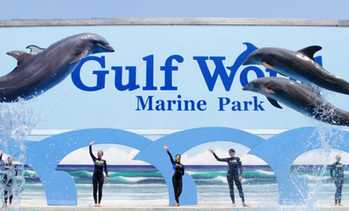 Groupon Pensacola Beach Restaurants