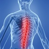 $35 for a One Hour Chiropractic Massage (Reg. $70)