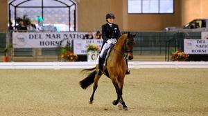 Del Mar Arena : Del Mar National Horse Show at Del Mar Arena