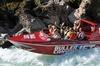 Buller Canyon Jet Boat Adventure Tour