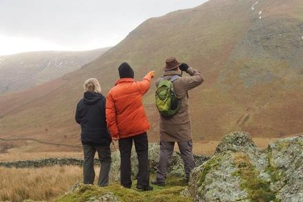 3Hour Deer Watch Walk from Ullswater