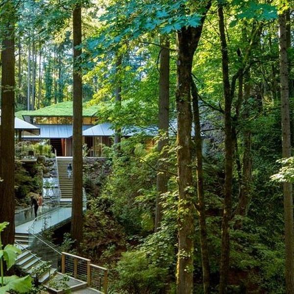 Portland Japanese Garden Portland Japanese Garden Groupon