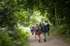 Sherwood Forest Explorer - Private Group Walking Tour of Sherwood N...