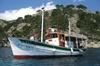 Recorrido en velero tradicional por el norte de Mallorca desde el p...
