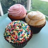 $16.50 For 1 Dozen Bakery Case Cupcakes (Reg. $33)