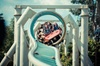 THORPE PARK - return transfers and day pass from Brighton