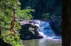 Full-Day Guided Hinterland Adventure Tour in Queensland