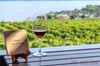 Kelowna Wine Routes Private tour