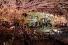 Cilento sotterranea - grotte di Spartaco a Castelcivita