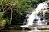 Small Group - Blue Mountain Tour with Scenic World Ride & Cruise (M...
