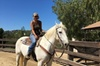 Top experience horse back riding and trails
