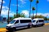 Arrival Transfer: Airport Shuttle Honolulu and Waikiki or Cruise Te...