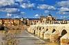 Escapada de un día completo a Córdoba con entrada a la Mezquita des...