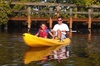 Guided Kayak Tour with Manatee and Dolphin Sightseeing