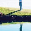 $100 For A Round Of Golf For 4 Including Cart (Reg. $220)