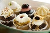 Santa Ynez Valley Cupcake and Wine Tour