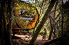 Blue Derby Pods Ride Experience 3-Day Mountain Bike Adventure in Ex...