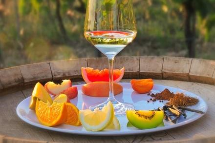 Coupon Enogastronomia & Locali Groupon.it Tour istruttivo del vino con degustazione a Siena