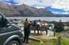 Arrowtown and Wanaka Premium Tour from Queenstown