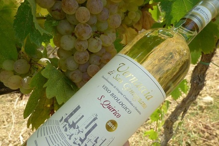 Maxi tour del vino per intenditori - degustazione di vini a San Gim...