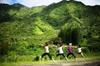 Jungle Waterfall Hike: Beachfront Yoga and Sacred Paths of Pali-Manoa