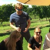 Long Island Wine Tour from NYC - Day Trip: Meet the Winemakers, Tas...